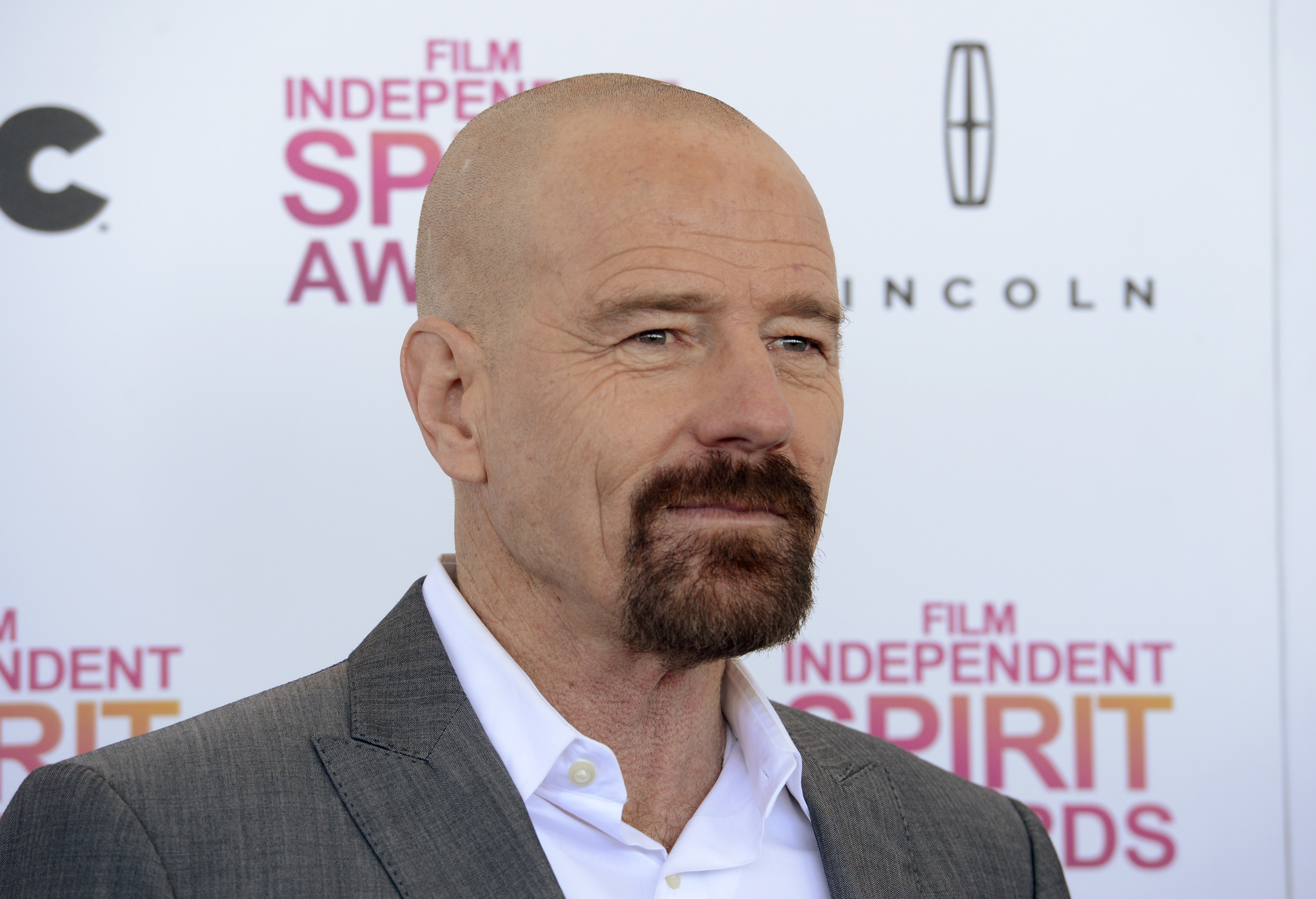 Actor Bryan Cranston arrives at the 2013 Film Independent Spirit Awards in Santa Monica