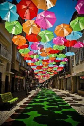 chapeus-de-chuva (1)