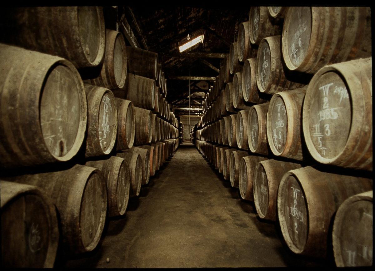 caves-vinho-do-porto