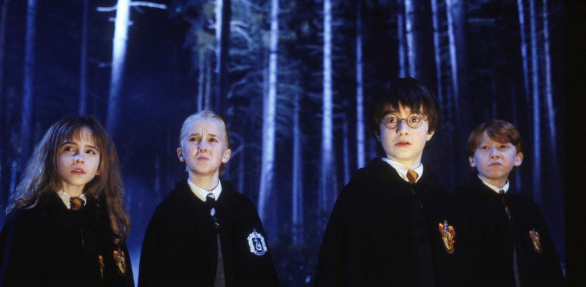 Floresta Proibida Harry Potter