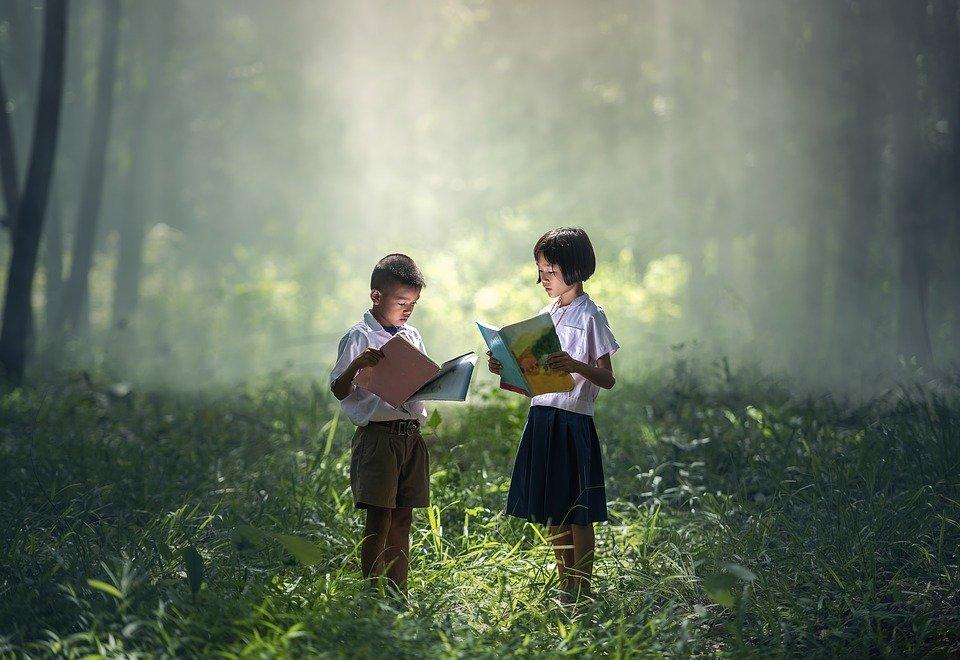 livros crianças floresta
