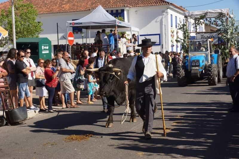 Festa da Bênção do Gado (Santarém)